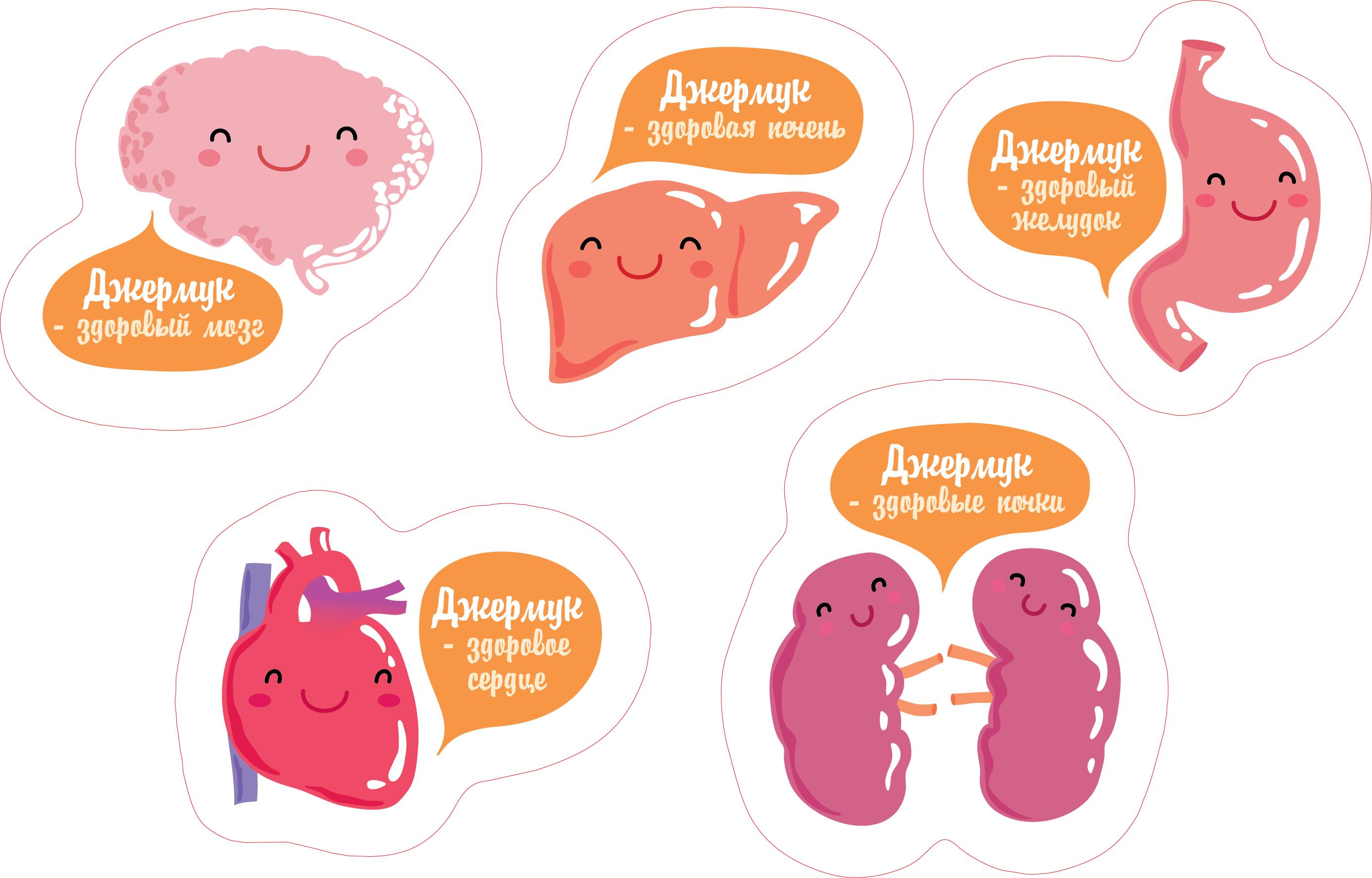 organs3